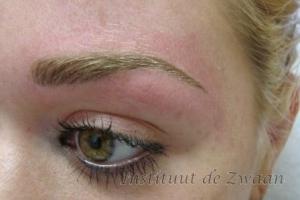 Ook met blonde wenkbrauwharen kan een mooi resultaat bereikt worden.